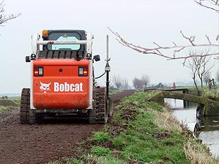 bobcat8